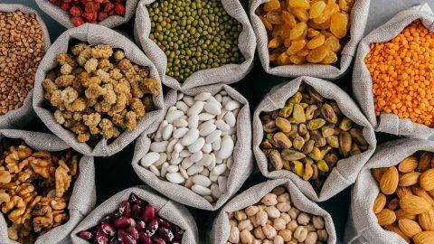 vegan protein infographics