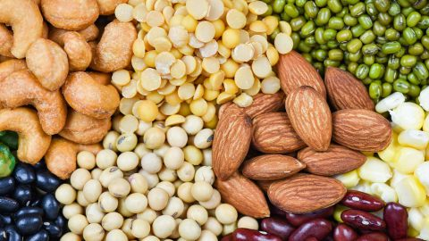 vegan protein guide