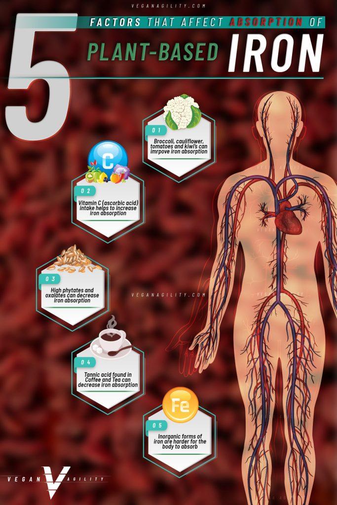factors that affect iron absroption