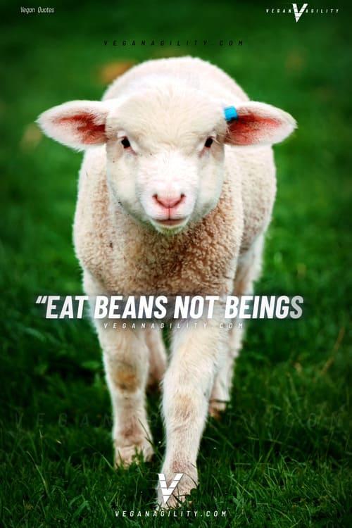 Vegan quote 21