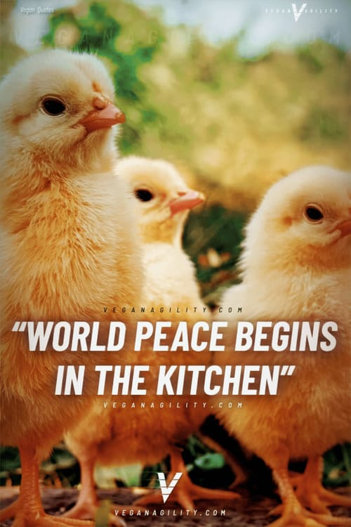 world peace begins in the kitchen