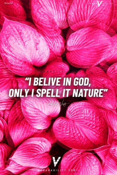 Nature quote 29
