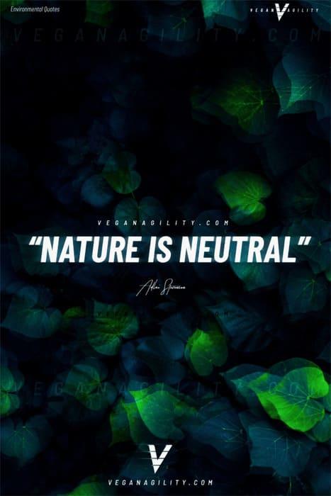 Nature quote 20