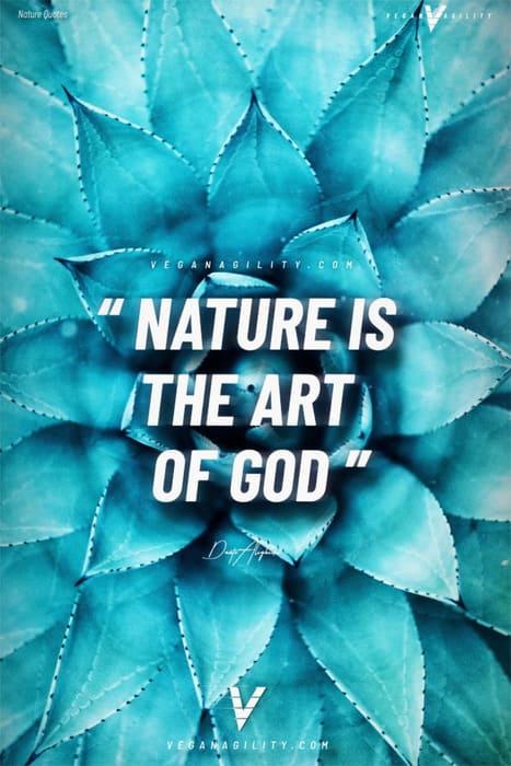 Nature quote 18