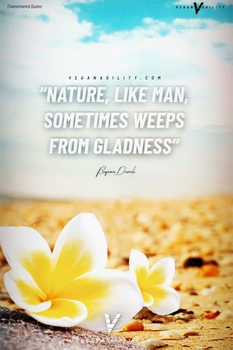 Nature quote 17
