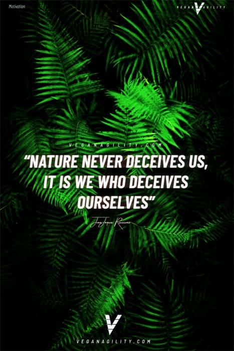 Nature quote 16
