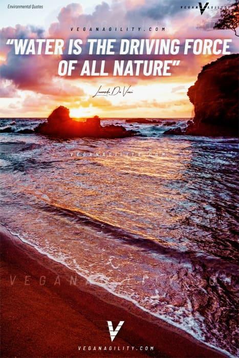 Nature quote 5