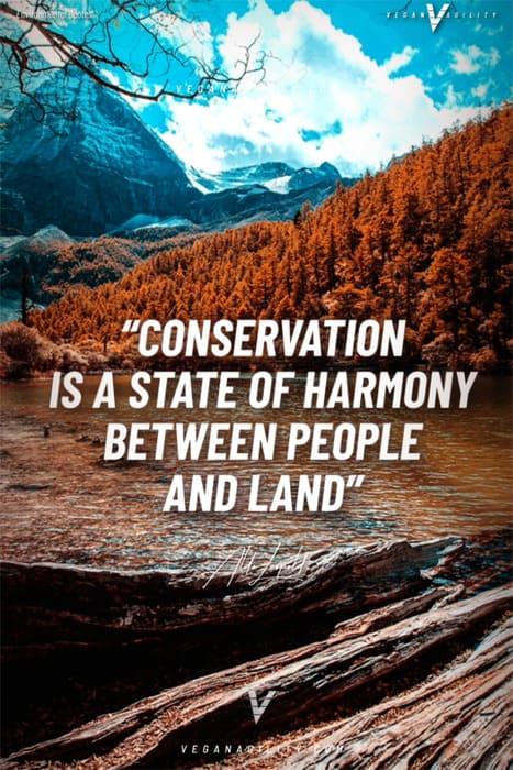 environmental quote 5