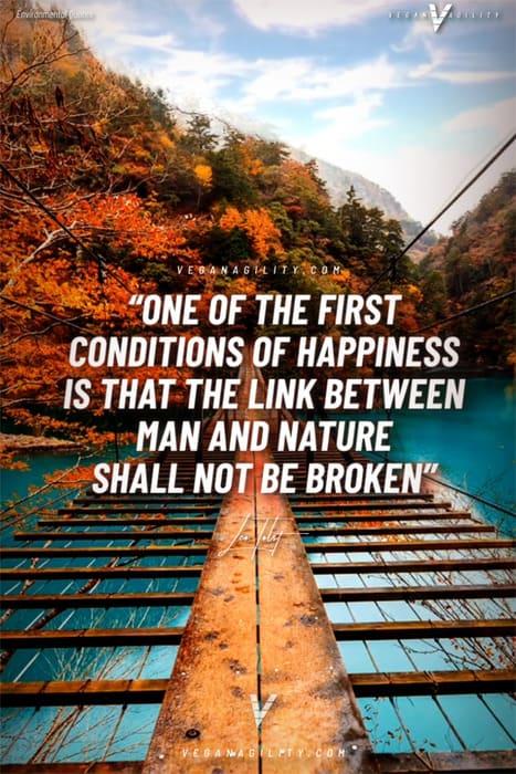 environmental quote 9