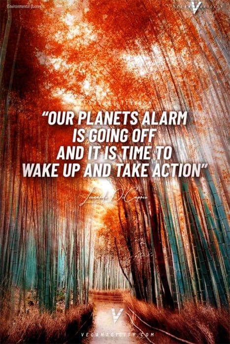 environmental quote 10