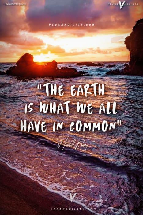 environmental quote 13