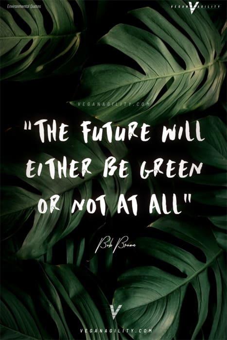 environmental quote 16