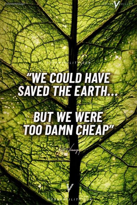 environmental quote 17