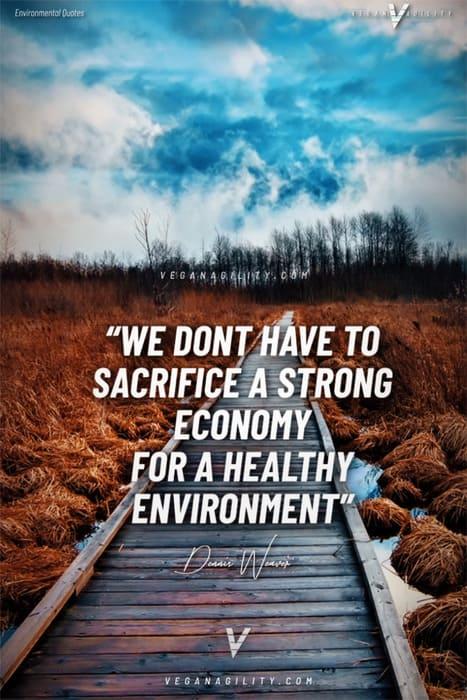 environmental quote 18